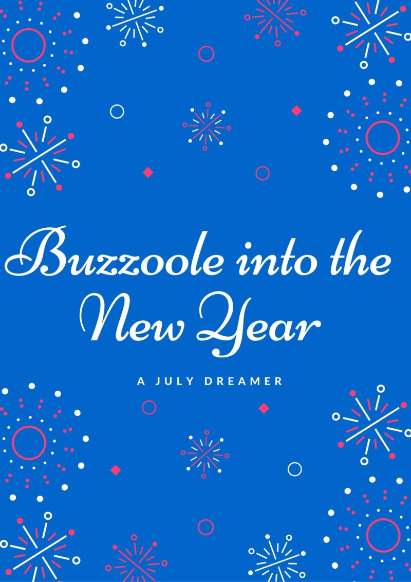 Buzzoole into the New Year