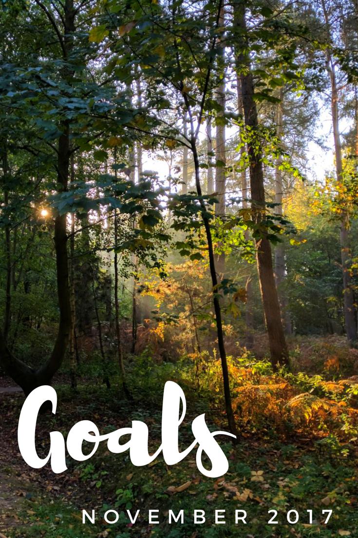 {Monthly Series} November 2017 Goals